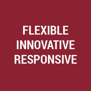 Flexible Innovative Responsive